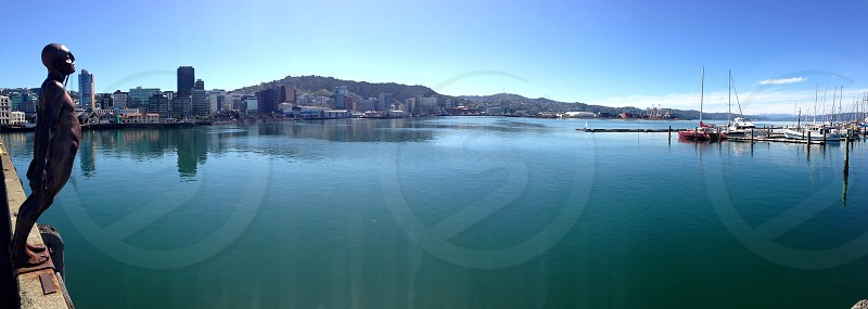 Wellington Harbour New Zealand photo