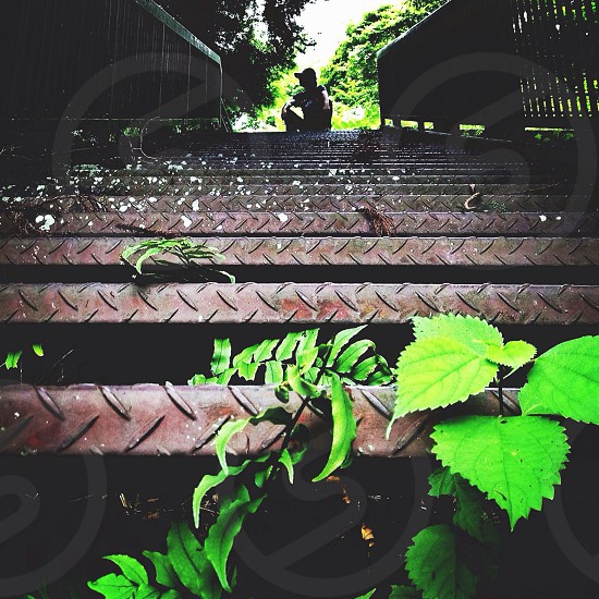 brown steel corrugated stairs photo