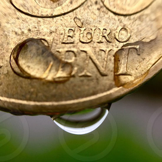 Money coins Europe Germany gold drop water macro scale photo