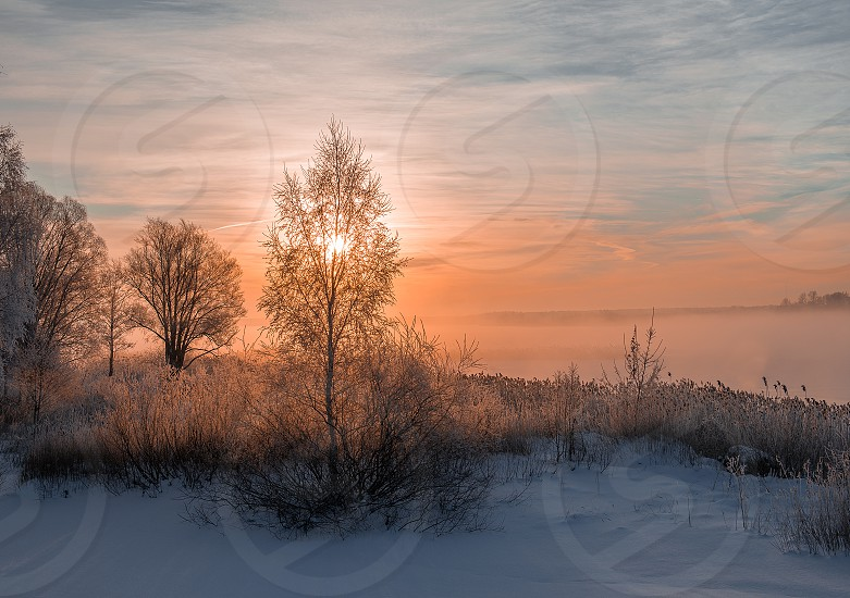 Beautiful winter morning sunrise photo
