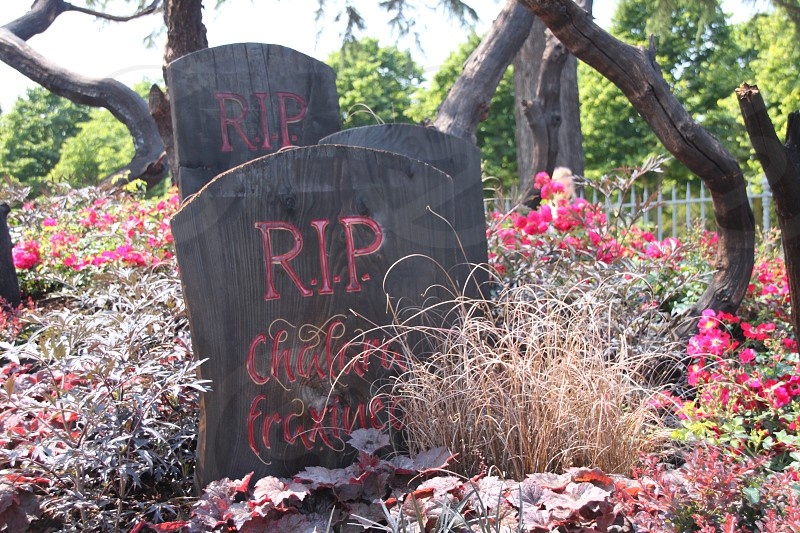 RIP on a gray headstone with flowers photo
