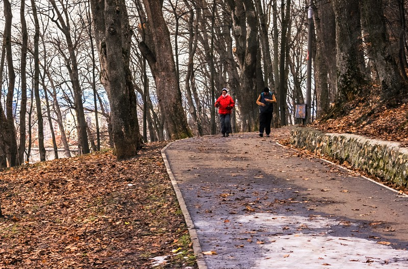 person in red and black bubble jacket and person in black jacket jogging on brown concrete road surrounded with tall trees and dried leaves on ground during daytime photo