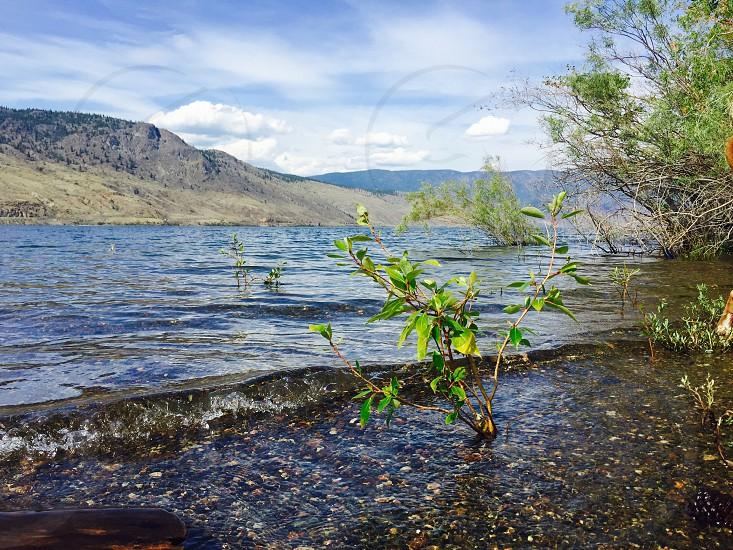 Lake Life photo