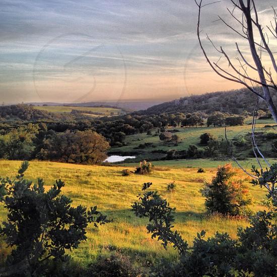 California landscape sunset pasture green beautiful countryside  photo