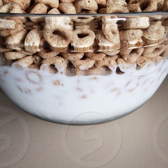 Cheerios: The one only.  photo