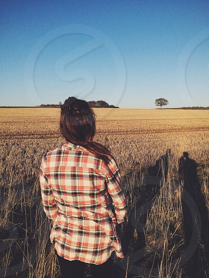 woman standing on wheat field photo