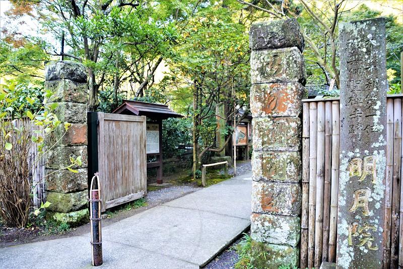 Meigetsu-in Kamakura photo
