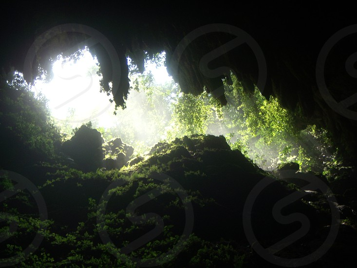The Cave in Puerto Rico  photo