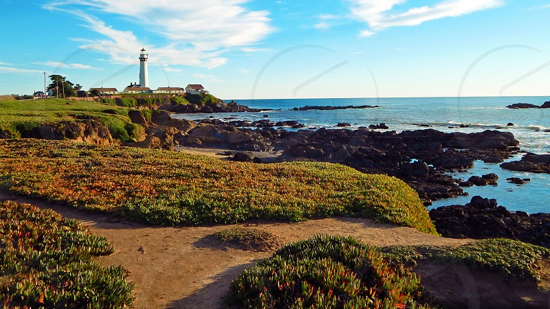 Pigeon Point Lighthouse and California Coastal National Monument in California photo