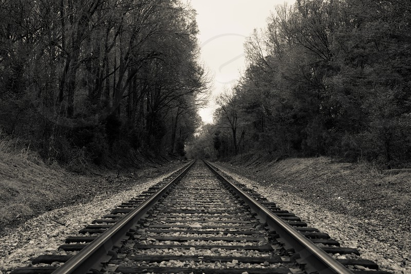 train rail road view photo