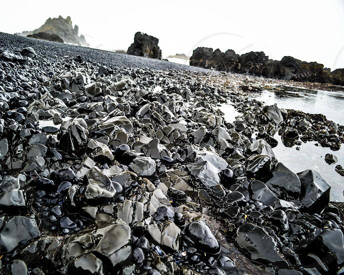 Cobble Beach  photo