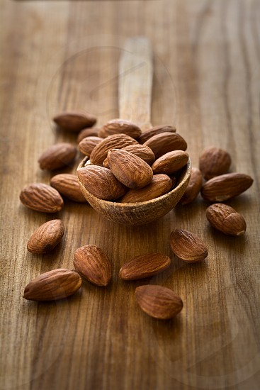 brown almond spoon nut food wooden photo