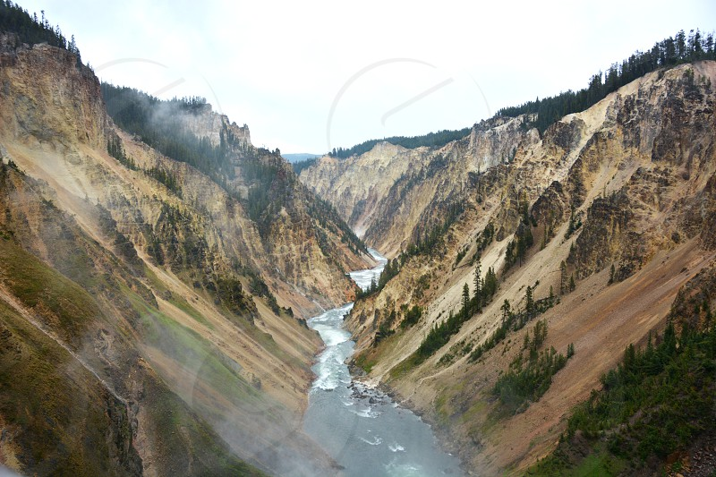 the grand canyon of Yellowstone National Park photo
