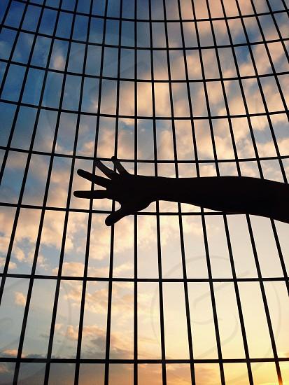 Reach photo