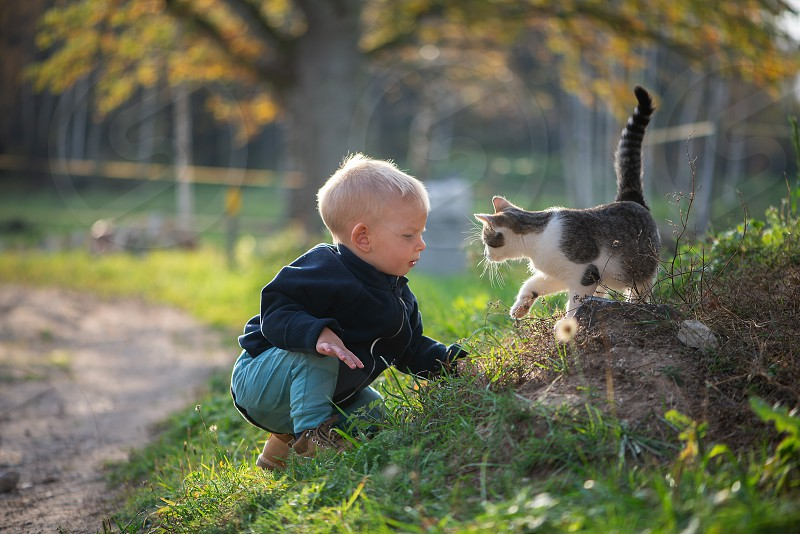 baby boy playing with cat photo
