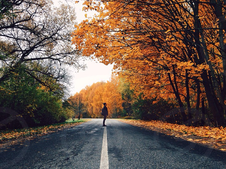 person standing in middle of road with forest on both side during daytime photo