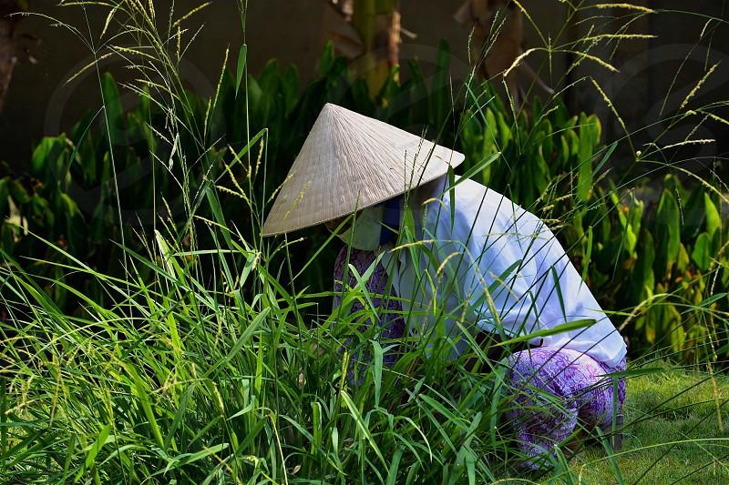 Vietnamese Lifestyle photo