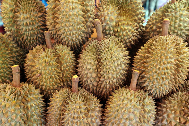 durian fruits atthe market in the city of Amnat Charoen in the Region of Isan in Northeast Thailand in Thailand.