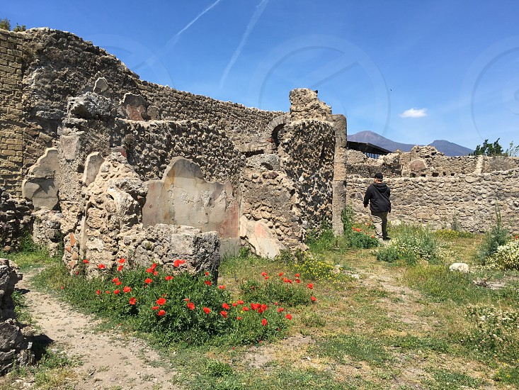Pompeii Pompei Campania archaeology ruins scavi ancient history archaeological dig Italy  photo