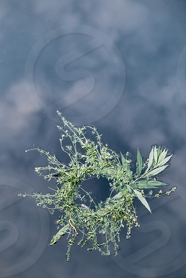 Wreaths of flowers and herbs floating on river. Midsummer divination photo
