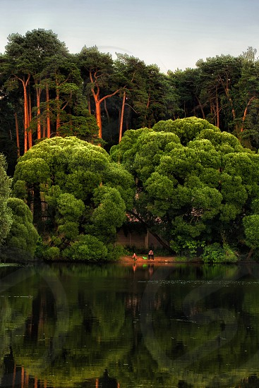 panoramic photo of two people near lake between green trees photo