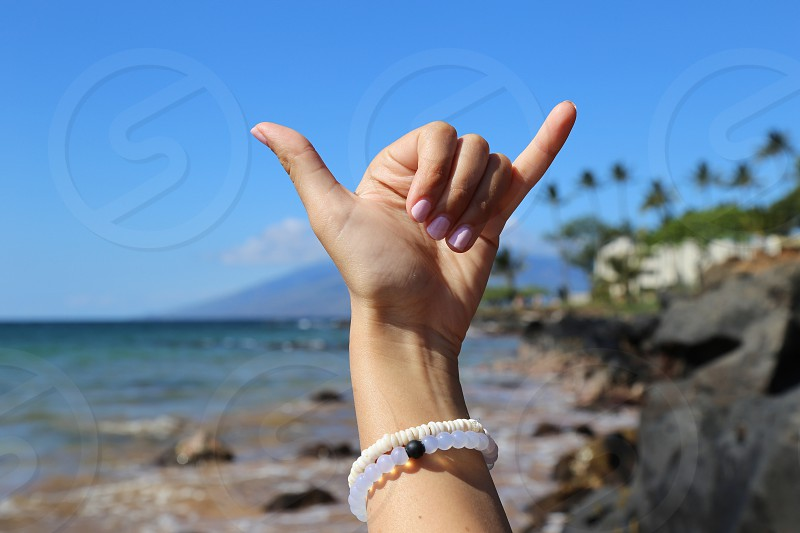 Shaka Surf Sign at Wialea Beach Maui HI photo