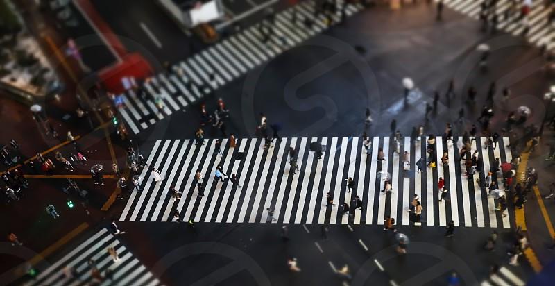 people crossing at Shinjuku crossing Tokyo Japan at night time photo