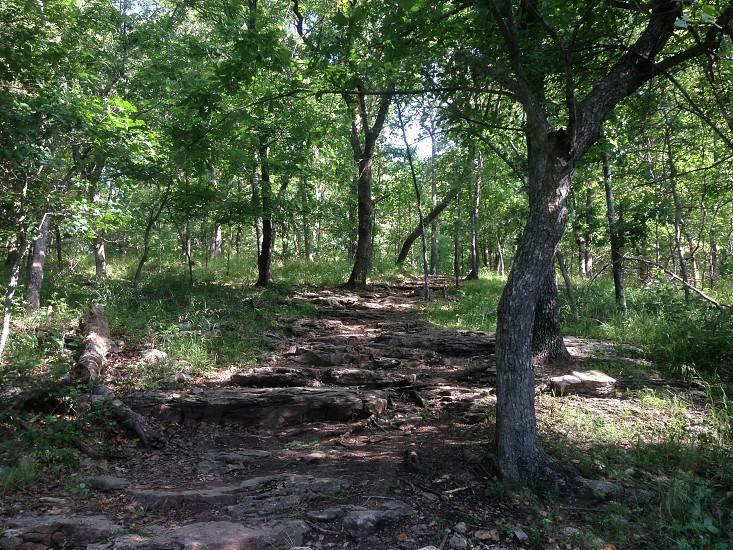A trail to somewhere photo