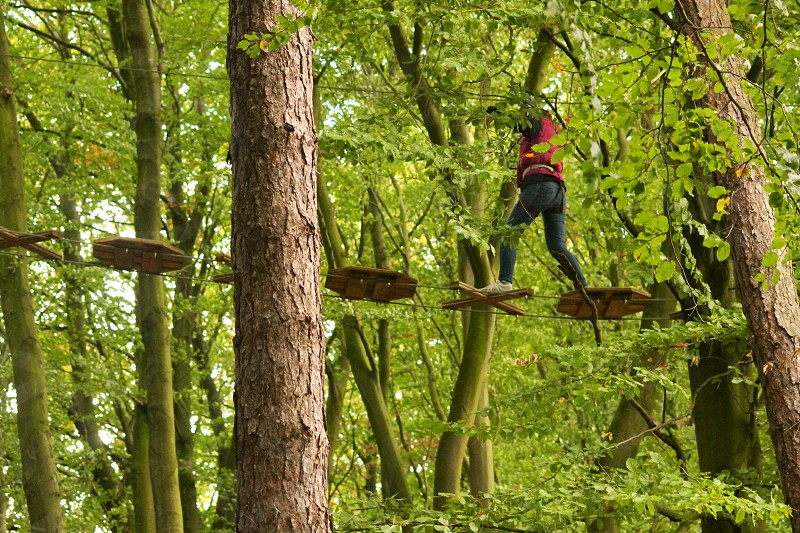 Go Ape  Adventure Trail Lancashire photo