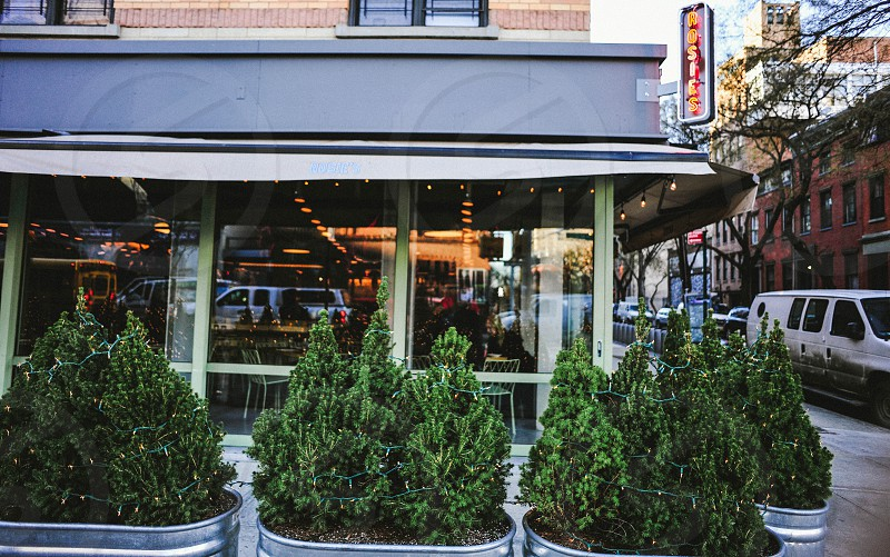 corner of a glass window restaurant with awning and green trees in galvanized planters photo