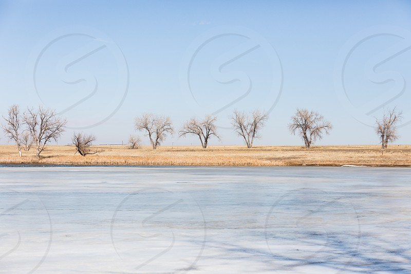 Impressions from the rocky mountain wildlife refuge in Denver Colorado photo