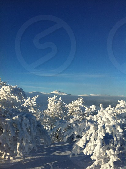 white snow under blue sky photo