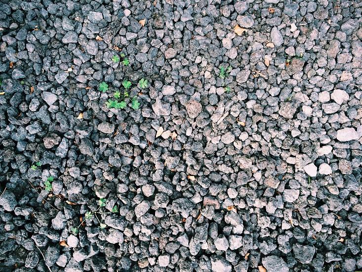 grey gravels  photo