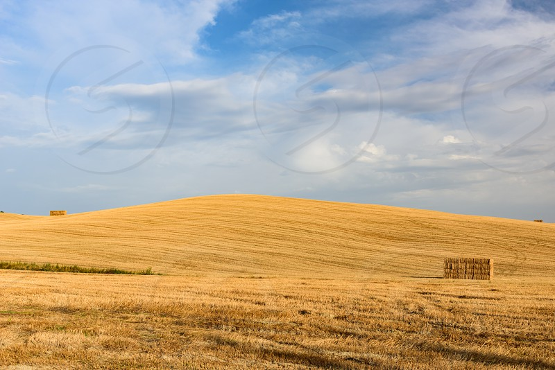 A hill in Val d'Orcia Tuscany during summer photo