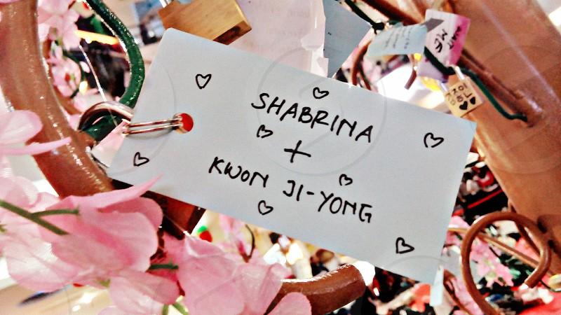 spring • flowers • sakura • valentine • love • match • tree • korean • japan • indonesian •padlock photo