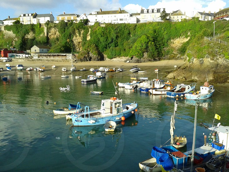 beautiful harbour photo