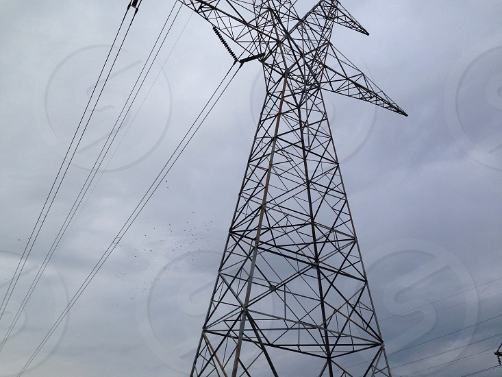 black electric power lines with white clouds background photo