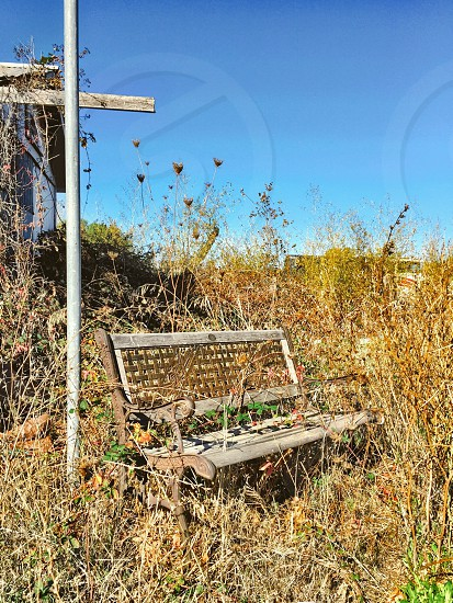 weathered bench in a field photo