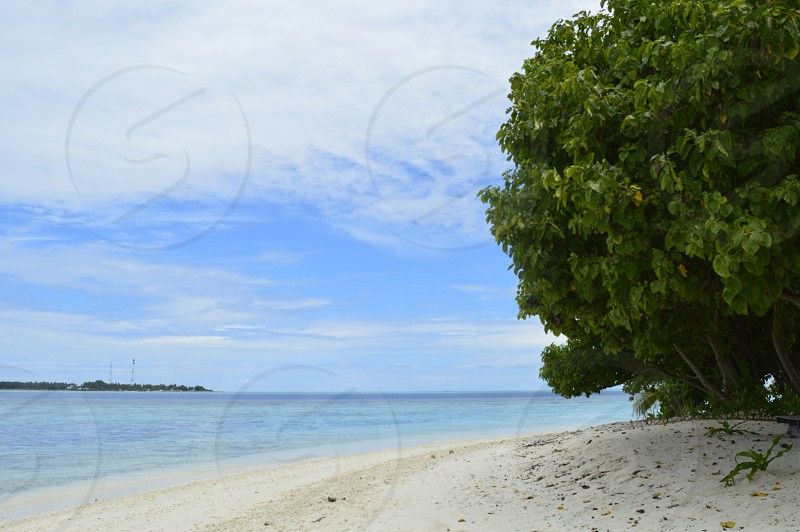 Maldives thinadhoo beach sea photo