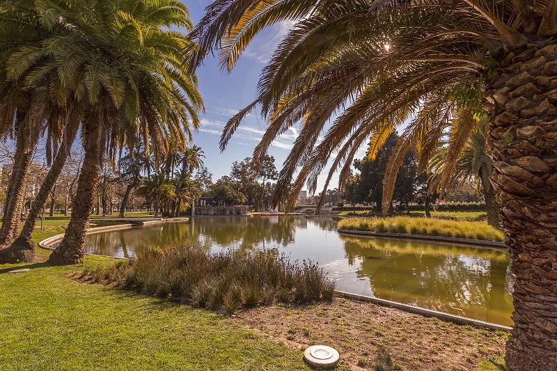 Lake in Campo Grande Lisbon photo