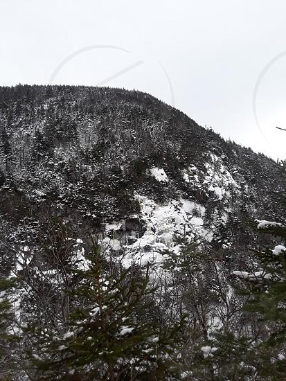 Amc trail NH photo