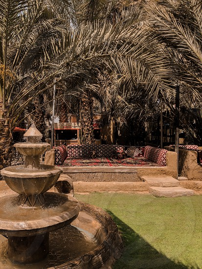 Cafe in the open air under the branches and leaves of palm trees.  photo