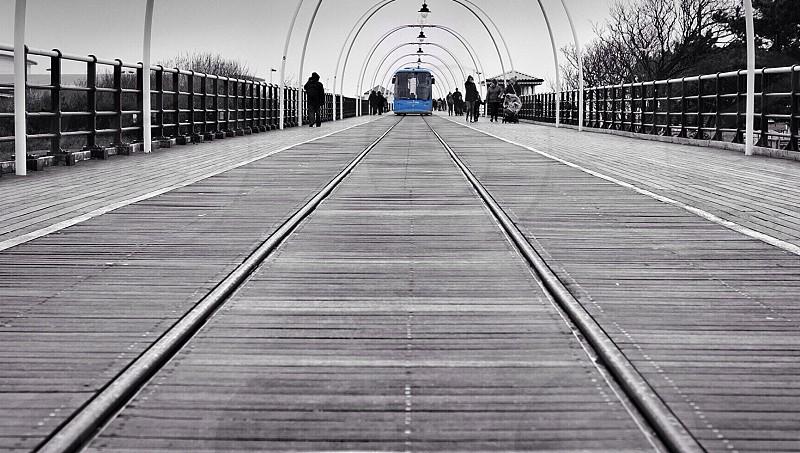 people walking near blue tram car photo
