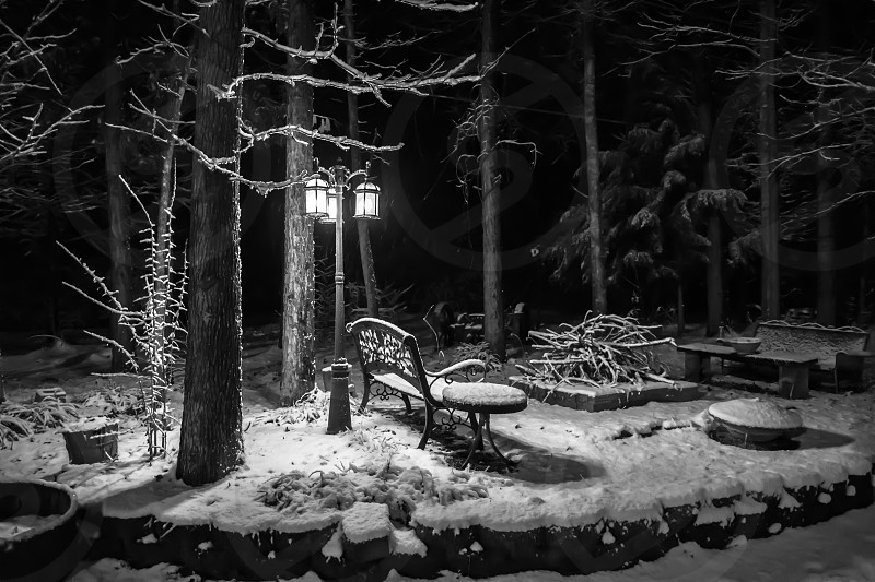 cold snowy night photo