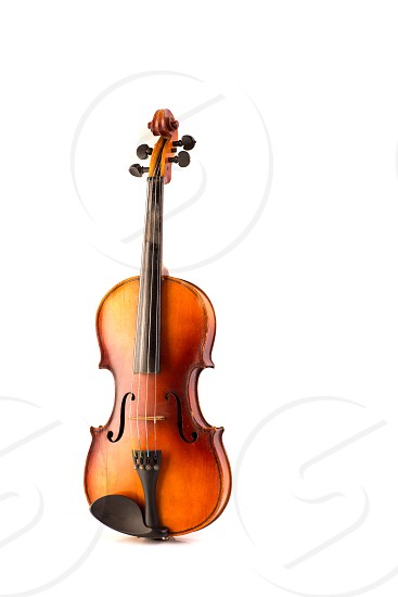 retro violin vintage isolated on white background photo