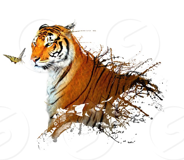 real tiger with splashes of paint and a butterfly nearby photo