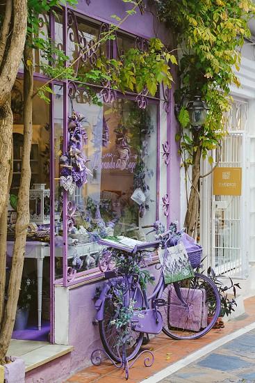 Store front store neighborhood store front purple bicycle  display window window display  street photo