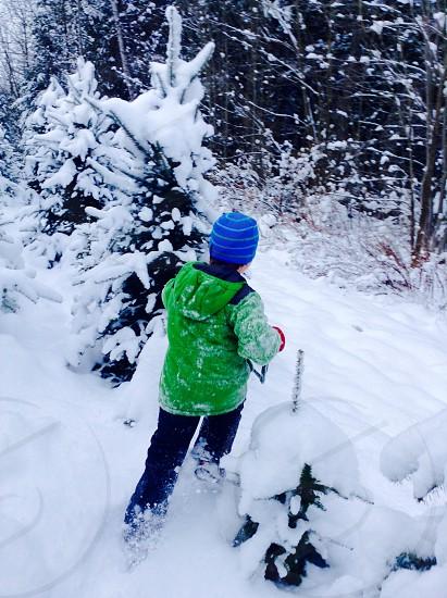 Running in a winter wonderland photo