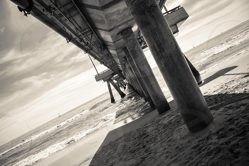 Under Venice Beach pier photo