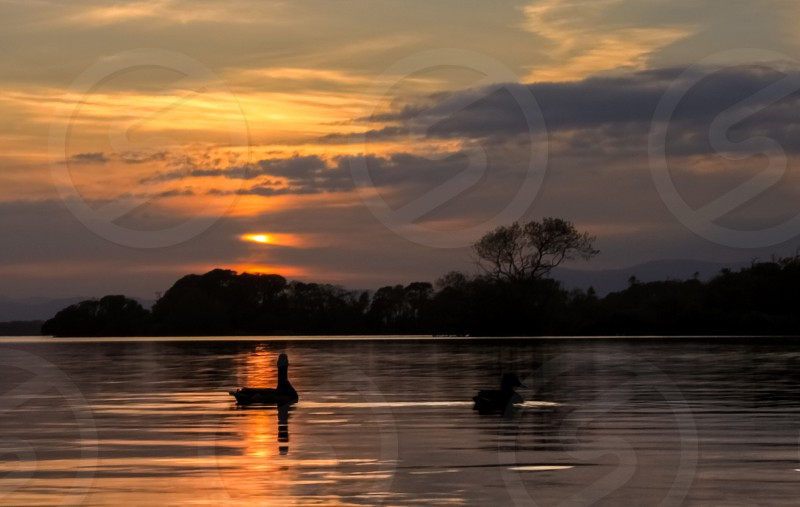 silhouette of person riding boat during sunset photo